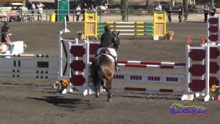 038S Christian Eagles on Bugatti CCI1* Show Jumping Galway Downs November 2014