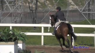 050S Gina Economou on Calidore Intermediate Show Jumping FCHP February 2015
