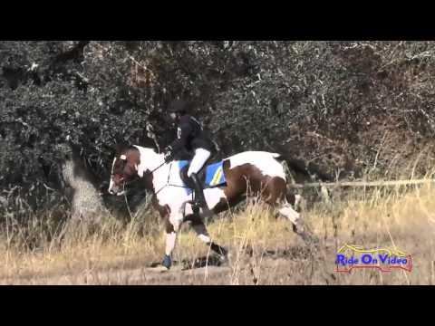 004XC Erin Murphy On Athlone Travel On CIC3* Cross Country Woodside Oct 2015