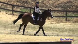 156XC Sophie Weisman on Capri JR Beginner Novice Cross Country FCHP April 2015