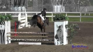 225S Lexie Thacker on Sail On Home Open Novice Show Jumping FCHP February 2015