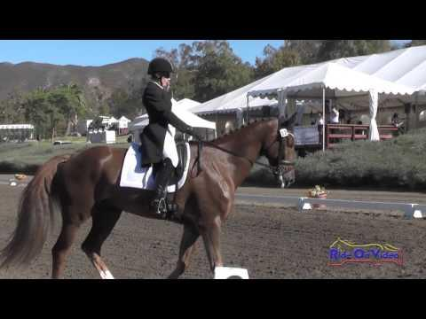 012D Lisa Marie Fergusson On Honor Me CCI3* Dressage Galway Downs Int'l Nov. 2015