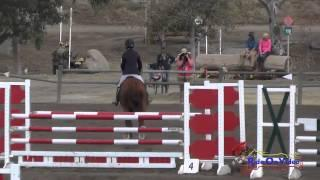 084S Leah Breakey on Master Plan CCI2* Show Jumping Galway Downs November 2014