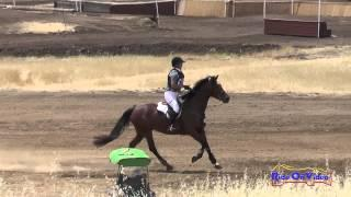 108XC Hillary Spry On LTF Street Wise Open Beginner Novice Cross Country Camelot July 2015