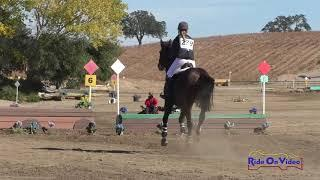 239XC Karlie Gonzalez Nelson on Magic Moon JR Beg. Novice Cross Country Twin Rivers Ranch Nov. 2020