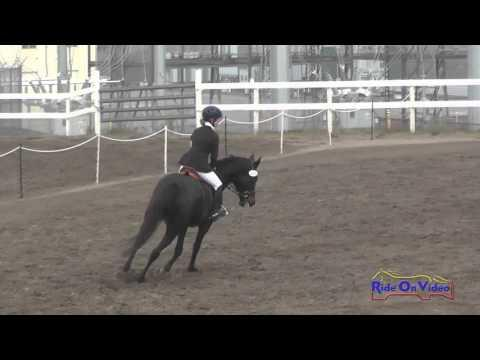 206S Ella Holthe On Stephany Intro Show Jumping FCHP November 2015