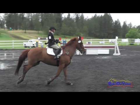 235S Louise Reulbach On Kaoimhe SR Preliminary Show Jumping Spokane Sport Horse HT May 2016