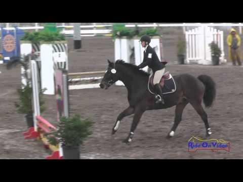 231S Merrin Wright On Deo Intro Show Jumping FCHP November 2015