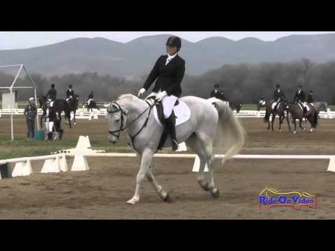 205D Madison Loving On Lascaro K SR Novice Amateur Dressage Twin Rivers Ranch March 2016