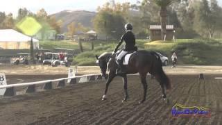 207D Mia Farley on Just a Mystery JR Training Dressage Galway Downs Int'l Event Nov 2014