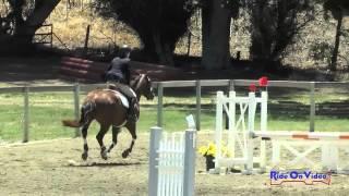 233S Ashley Cox On Hermes SR Beginner Novice Show Jumping Shepherd Ranch June 2015