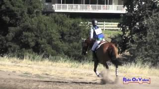 185XC Charlotte Babbitt On Coyote Red Radish JR Novice Cross Country Woodside August 2015