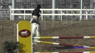 105S Maddy Mazzola on Mojito Intermediate Show Jumping FCHP January 2015