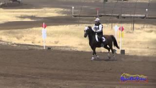 103XC Erin Critz On Akira Beijing Open Beginner Novice Cross Country Camelot July 2015