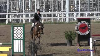 294S Alexis Helffrich on Bonanza Open Beginner Novice Show Jumping FCHP February 2015