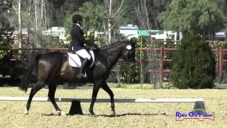 115D Deirdre Orcelletto on Got Rugged SR Training Dressage Copper Meadows March 2015