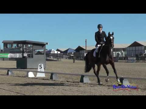 406D Kelsey Horn On Swingtown YEH 4 YR Old Championships Dressage Woodside October 2016