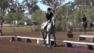 241D Ashley Samson on Storm Watch Open Beginner Novice Dressage Copper Meadows March 2015