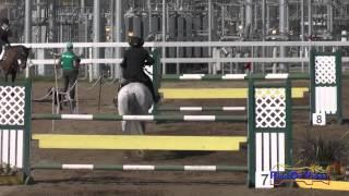 040S David Acord on Code of Conduct Intermediate Show Jumping FCHP February 2015