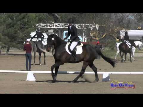 406D Sophia Wilcox On Optimist II SR Beginner Novice Dressage Twin Rivers Ranch April 2016