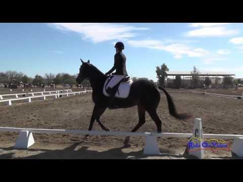 082D Stephanie Nicora On High In The Air Preliminary Rider Dressage Twin Rivers Ranch Sept. 2016