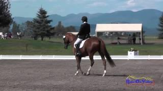 045D Jennifer McRonald On Charlotte CCI1* Dressage The Event At Rebecca Farm July 2015