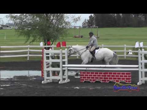 158S Willis Kurtz On Windsor SR Novice Show Jumping Spokane Sport Horse HT May 2016