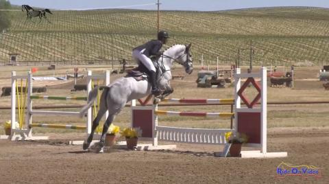 CCI3* Long Show Jumping Twin Rivers Ranch April 2019