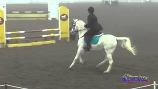022S Kaila Flores on Princess Xyla Beginner Novice Show Jumping FCHP January 2015