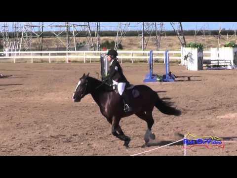136S Pia Tucker On Wensleydale SR Beginner Novice Show Jumping FCHP April 2016