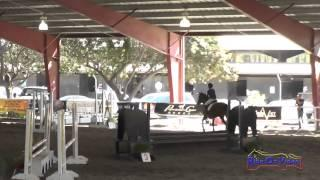053J1 Cassidy Wallace on Discover Me Beginner Novice Jumping Pacific Indoor Eventing October 2014