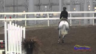 185S Katy Johnstone on Northern Victory SR Beginner Novice Show Jumping FCHP November 2014