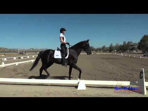312D Emilee Libby On Sunsprite's Fleurette YEH 5yr Old Dressage Twin Rivers Sept 2015