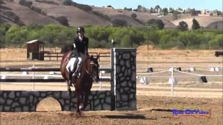 011S Emilee Libby Advanced Show Jumping Twin Rivers Ranch Sept 2013