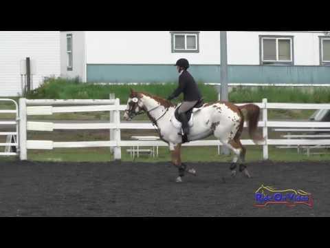 005S Diana Greive On Major Splash Of Class Intro Show Jumping Spokane Sport Horse HT May 2016