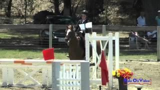290S Savannah Gwin On Sir Thomas JR Beginner Novice Show Jumping Shepherd Ranch June 2015