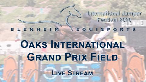 Blenheim Equisports Live Streams