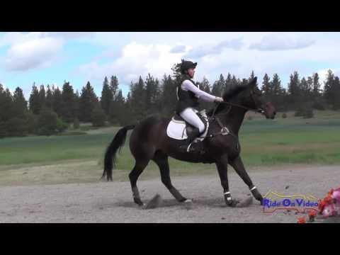 292XC Kylan Maki On Synurator JR/YR Preliminary Cross Country Spokane Sport Horse HT May 2016