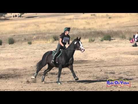 230XC Taylor Hansen On Whisper JR Novice Cross Country Woodside Oct 2015