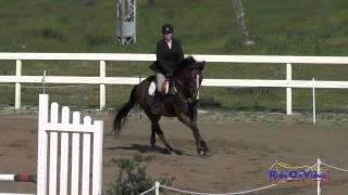 280S Tayler Ravenscroft on Shadow Boxer Open Beginner Novice Show Jumping FCHP February 2015