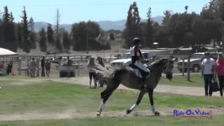 123XC Megan Compton On Patina DCF Intro Cross Country Shepherd Ranch August 2015