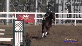 041S Theresa Smrt on Landmark Preliminary Rider Show Jumping Fresno County Horse Park Oct 2014