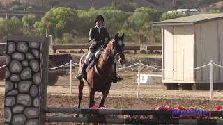 375S Cassidy Wallace Intro Show Jumping Twin Rivers Ranch September 2013