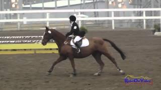 169S Grace Illsley on Dancing Diva JR Beginner Novice Show Jumping FCHP November 2014