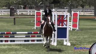 162S Sidney Bashaw on Candy Pop JR Beginner Novice Show Jumping Galway Downs May 2014