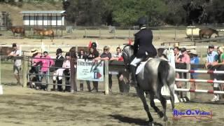 117S Jolie Wentworth On KF Chelada Open Training Cross Country Shepherd Ranch June 2015