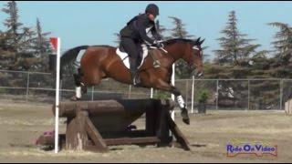 222XC Erin Serafini on Another Star Open Training Cross Country FCHP April 2015