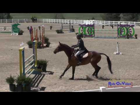 024S Ruth Bley On Rodrigue Du Granit CCI1* Show Jumping Colorado Horse Park June 2016