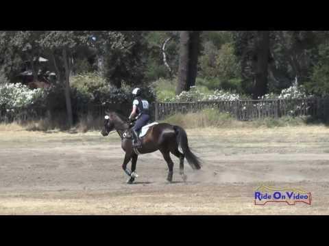 271XC Chloe Feingold On Regulus JR Beginner Novice Cross Country Woodside August 2016