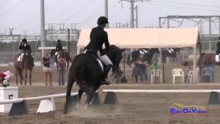 155D McKenzie Miller on Abracadabra Open Beginner Novice Dressage Fresno County Horse Park Oct 2014